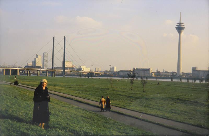 brücke, Düsseldorf, park, Rhein, Rheinkniebrücke, rheinturm, spaziergang, turm, wiese
