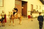 Kostümierter Reiter
