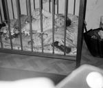 Im Kinderbettchen