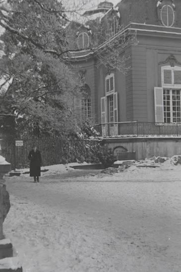 baum, Düsseldorf, Schloss Benrath, schnee, weg