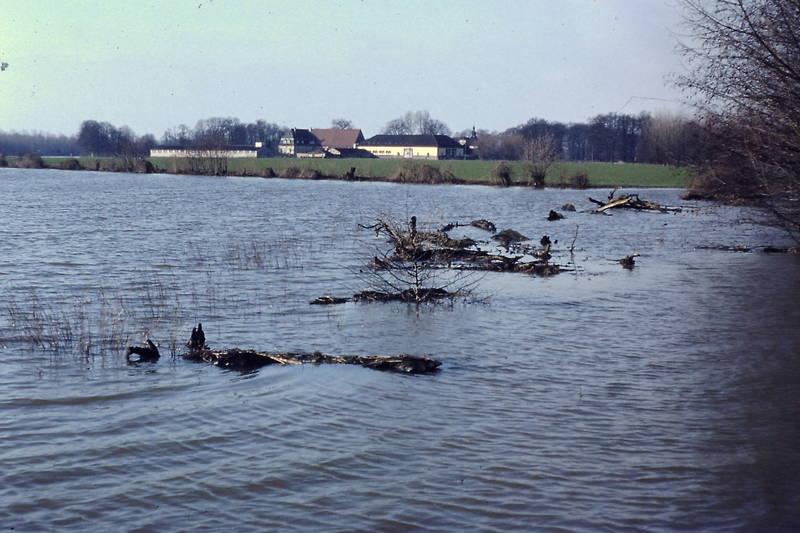 Cappel, Hochwasser, Lippe, Weidefläche