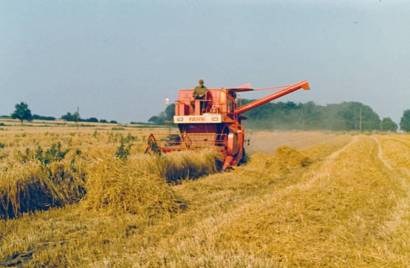 arbeit, arbeiten, feld, Getreide, Landwirtschaft, Mähdrescher