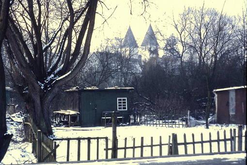 Schrebergarten im Winter
