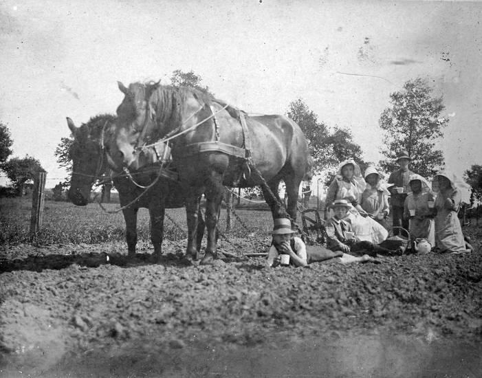 familie, feld, Feldarbeit, pause, Pferd, pflug, picknick