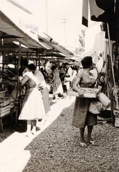 Travisio Markt