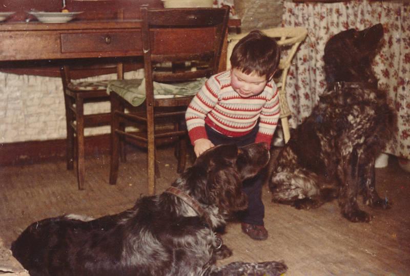 haustier, hund, Kindheit