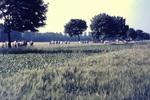 Bauerschaft Hentrup