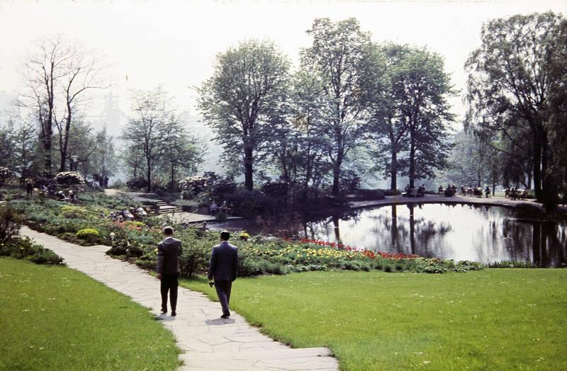 Blumenbeet, Bundesgartenschau, Dortmund, spaziergang, westfalenpark