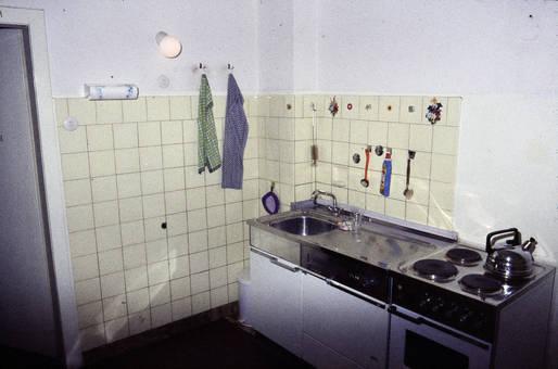 Küchenzeile mit Prilblumen