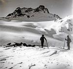 Ski in den Alpen