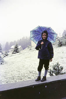Schirm gegen Schnee