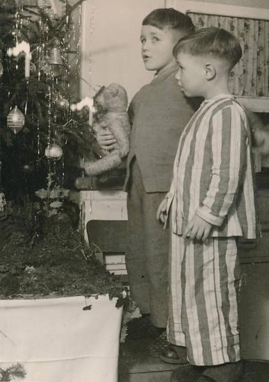 Singen, Teddy, Teddybär, Weihnachten, Weihnachtsbaum