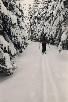 Skifahren im Erzgebirge