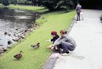 Enten- & Kinderpaar
