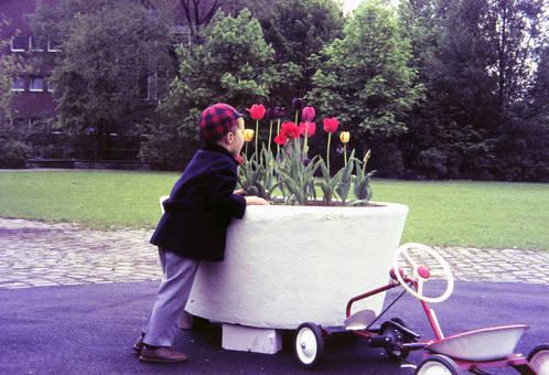 Parkplatz bei den Blumen