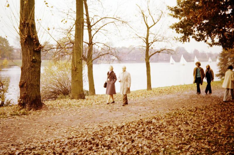 Blatt, boot, freizeit, Herbst, mantel, Segelboot, segeln, Spaß, Spazieren, spaziergang