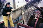 Auf dem Fischerboot
