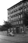 Käfer in Berlin