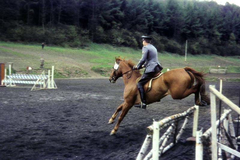 galoppieren, Galopprennen, Hindernisparcours, Hindernisparkour, hinderniss, hindernissrennen, hürde, hürdenrennen, parcoursreiten, parkour, Pferd, pferdesport, reiten, Reiter, Zuschauer
