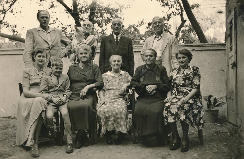 familie, Familientreffen, haustier, hund, Kindheit, kleid, Muster