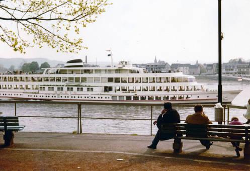 Rheinufer in Linz