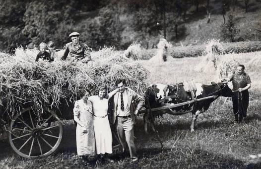 Korneinfuhr