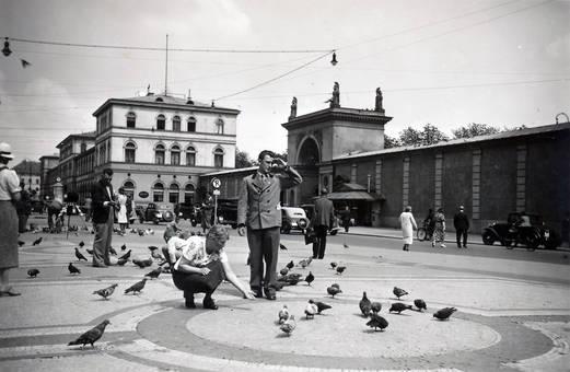 Tauben füttern am Odeonsplatz