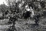 Zwei Frauen zwischen Pflanzen