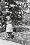 Am Magnolienbaum