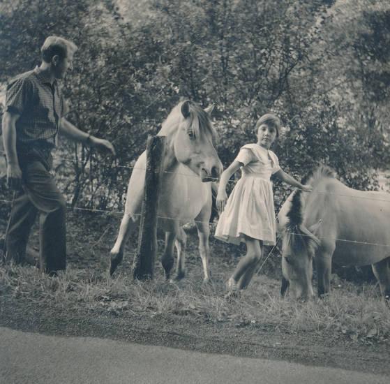 Kindheit, kleid, Pferd, zaun