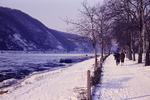 Treibeis auf dem Rhein