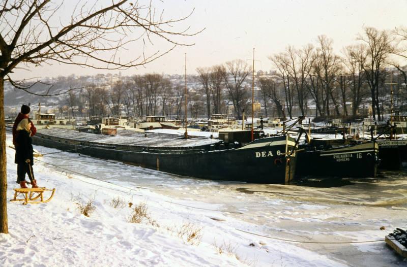 Eis, Frachtschiff, Koblenzer Rheinlache, oberwerth, schiff, schlitten, schnee, winter, Winterhafen