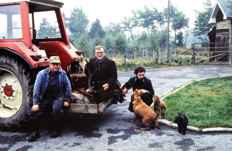 Bagger, Hirsch, hund, Reh, straße
