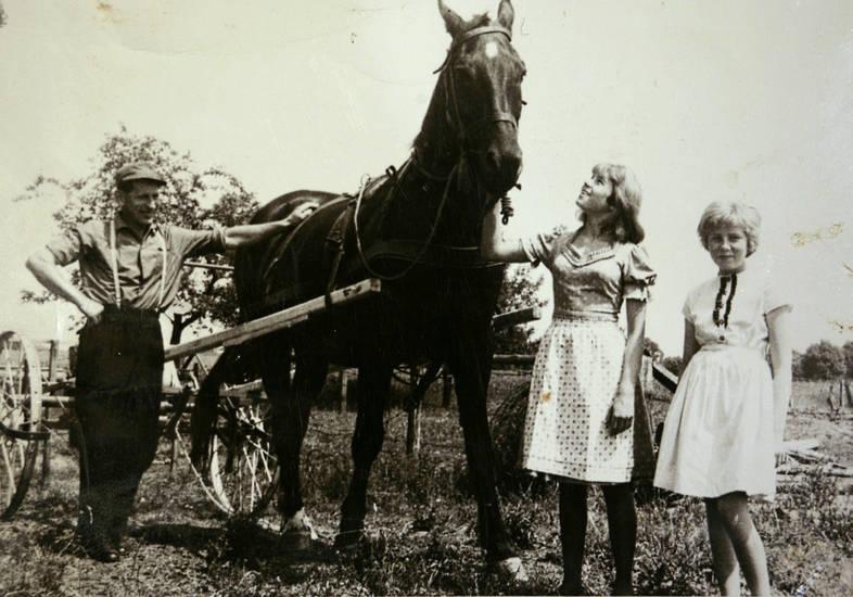 Dirndl, Gabelheuer, gabelheuwender, kleid, Pferd