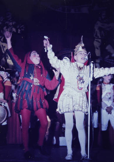 feier, karneval, Kostüm, Mikrofon, party