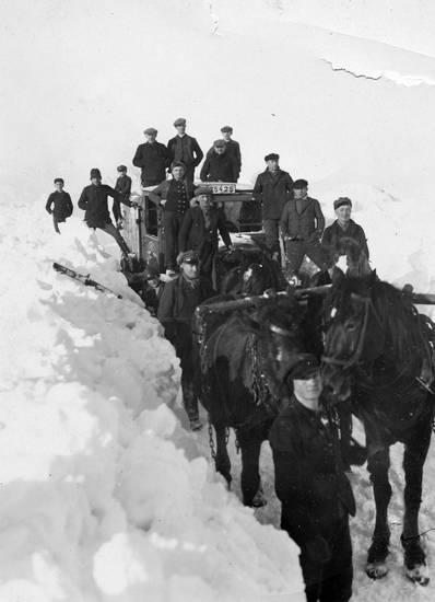 Abschleppdienst, auto, KFZ, Pferd, PKW, schnee, winter