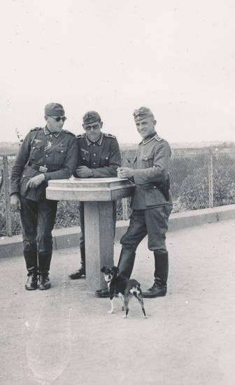 2.Weltkrieg, hund, soldat, sonnenbrille, Uniform, Wehrmacht
