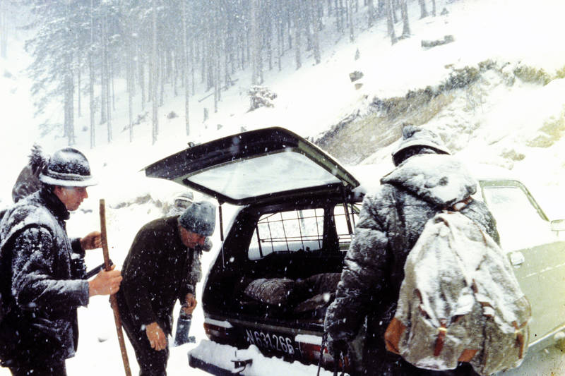 auto, baum, KFZ, kofferraum, Lada-Niva, Parkplatz, PKW, schnee