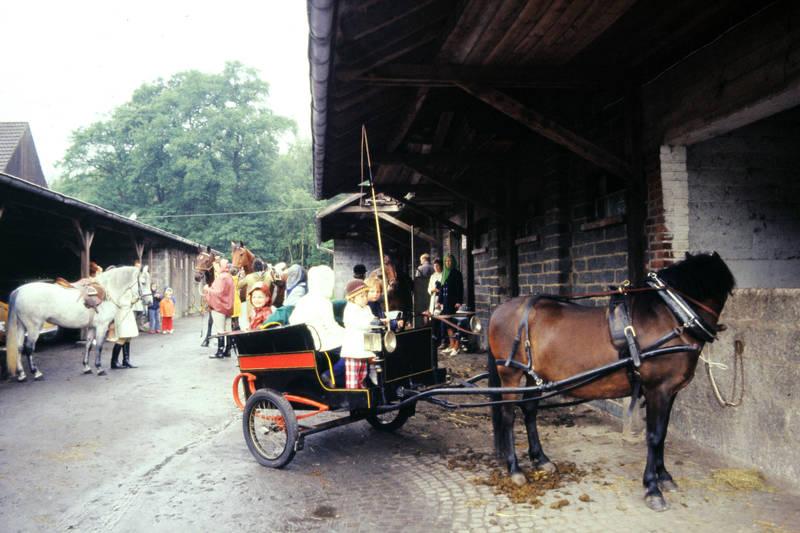 gesellschaft, Kindheit, Kutsche, peitsche, Pferd, Pferdeäppel, pferdefuhrwerk, Regenjacke