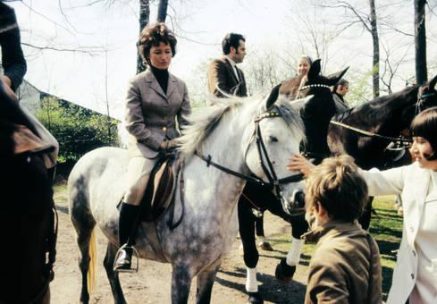 Auf dem Pferd