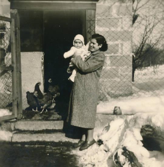 familie, garten, Huhn, Hühnerstall, Kindheit, Mutter, schnee, winter