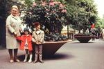 Vor den Blumen