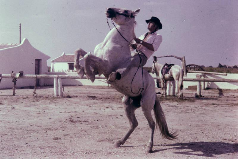 cowboy, hut, Pferd, Reiter