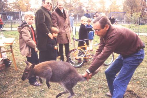 Mann hält Känguru