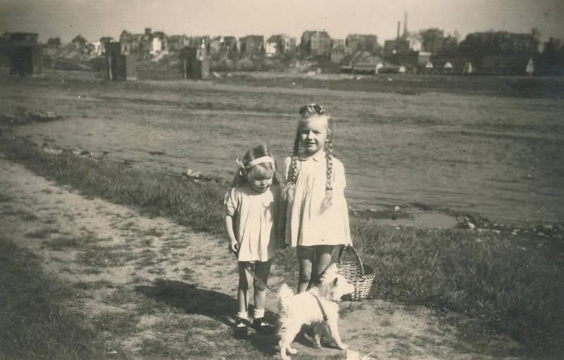 hund, Kindheit, korb, Rhein, Zopf