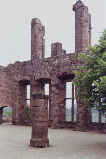 baum, burg, Nideggen, Ruine