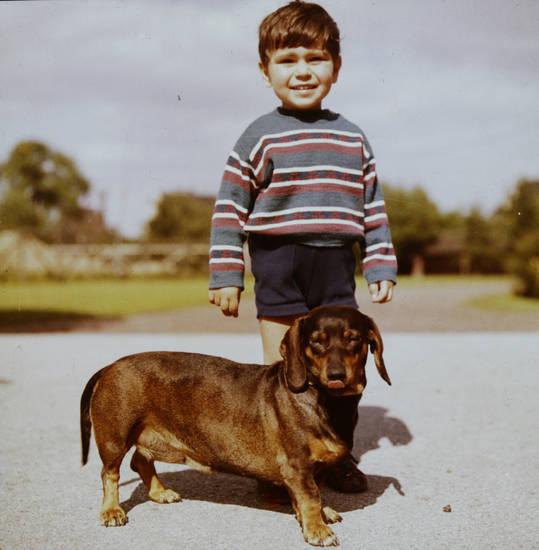 dackel, hund, Kindheit, kurze hose, Pullover