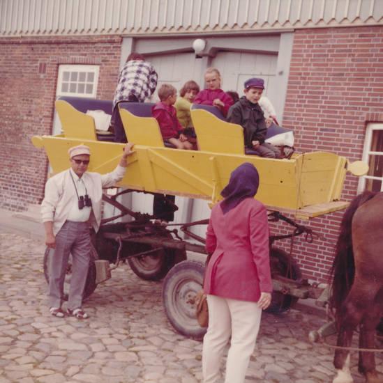 cuxhaven, fuhrwerk, Kutsche, Pferd, Rundfahrt