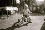 Dreirad im Garten