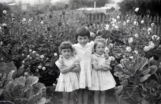 Drei im Garten